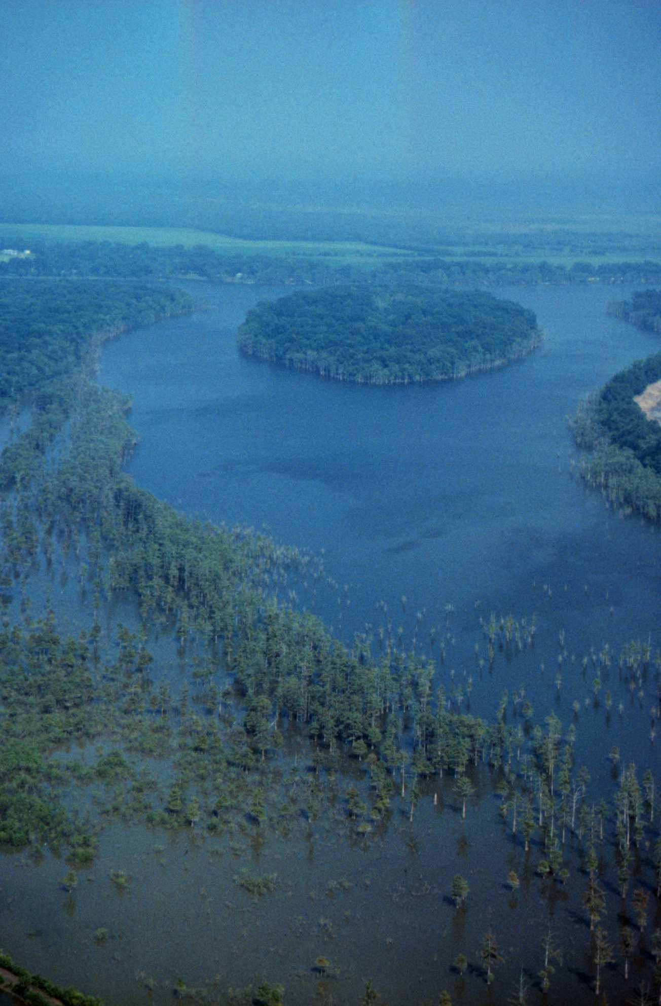 1997 Oblique Photos For Lake Mary Ms La