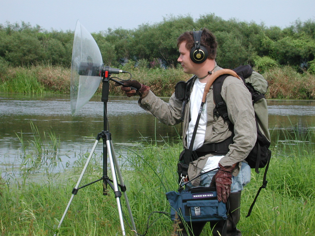 Monitoring Frog Calls With Parabolic Microphone