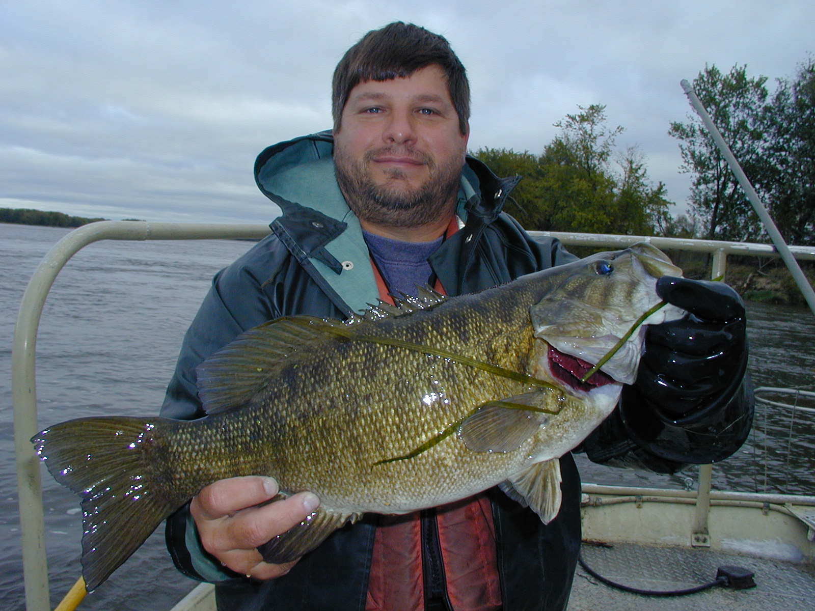 Usgs Scientist Jon Vallazza Sampling Fish On Pool 8 Upper
